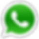 Whatsapp Ari Sandy.png