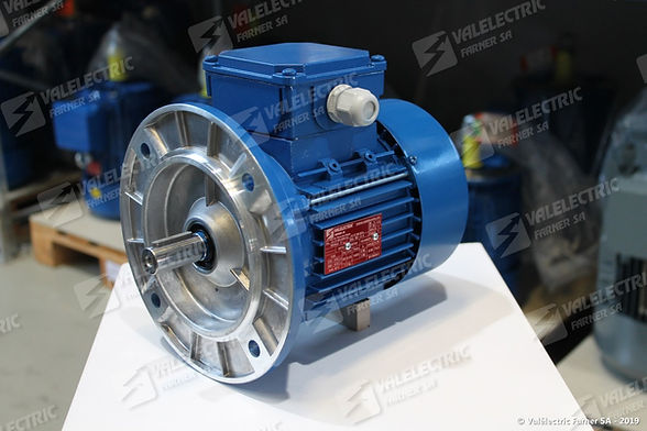 80_-_B5_Valélectric_moteur_electrique_1.