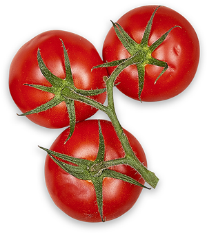 grappe-3-tomates-haut.png