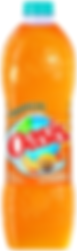 SOFT Bouteille Oasis (Tropical) 2l.png
