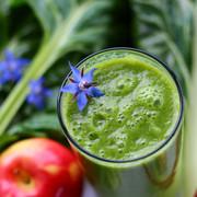 Garden Gate Health Classic Green Smoothi