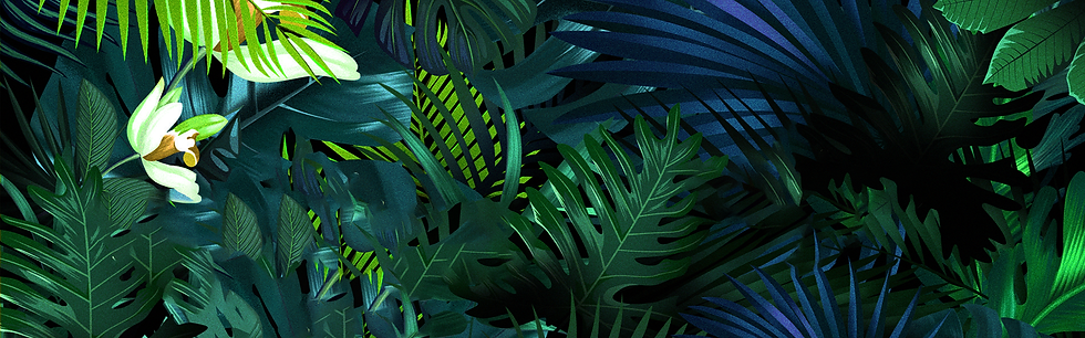 Tropical Background with Palm Leaves - Free PNG Images, Instant Download