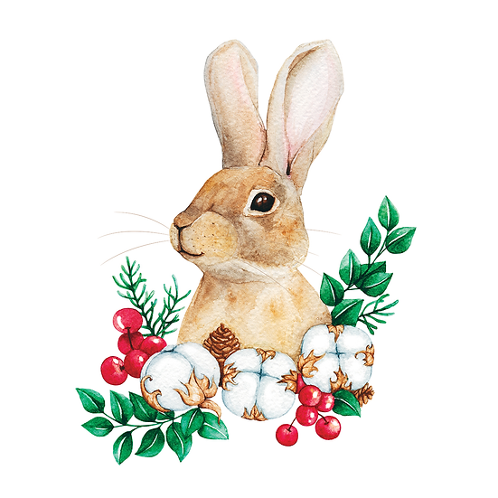 Amazing Easter Rabbit Clipart - Easter PNG Image - Instant Download