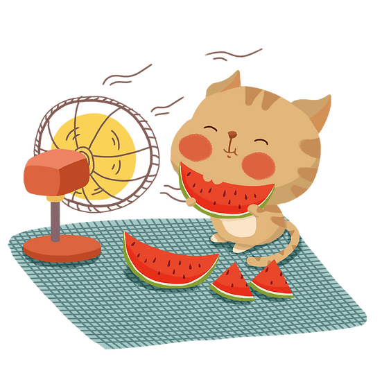 Cute Cat with Watermelon - Free PNG Images, Transparent Image Instant Download