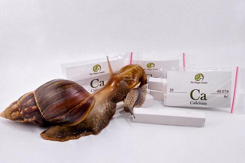 Snail-Care