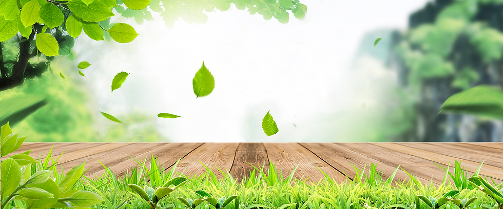 Green Nature Background - Free PNG Images, Instant Download