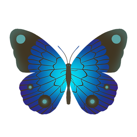 Amazing Butterfly Clipart - Free PNG Images, Transparent Image Digital Download