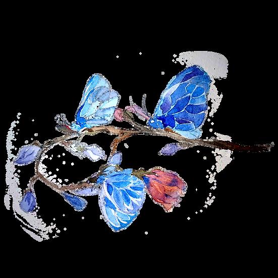 Watercolor Butterflies Art - Free PNG Images, Transparent Image Digital Download