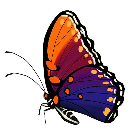 Pretty Butterfly Clipart - Free PNG Images, Transparent Image Digital Download