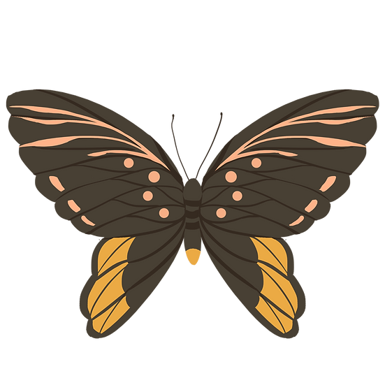 Brown Butterfly Clipart - Free PNG Images, Transparent Image Instant Download