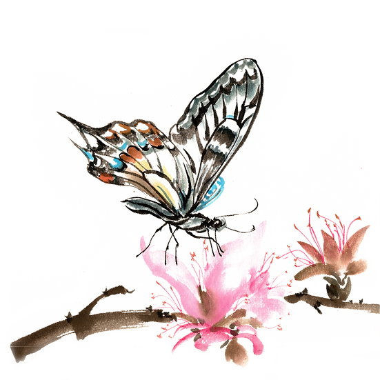 Lovely Butterfly Clipart - Free PNG Images, Transparent Image Instant Download