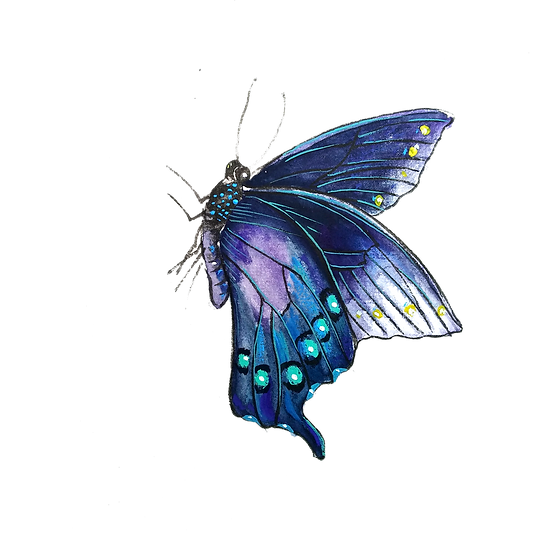 Charming Butterfly Art - Free PNG Images, Transparent Image Instant Download