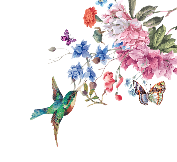 Colibri, Butterfly & Flowers Free PNG Images - Free Digital Image Download
