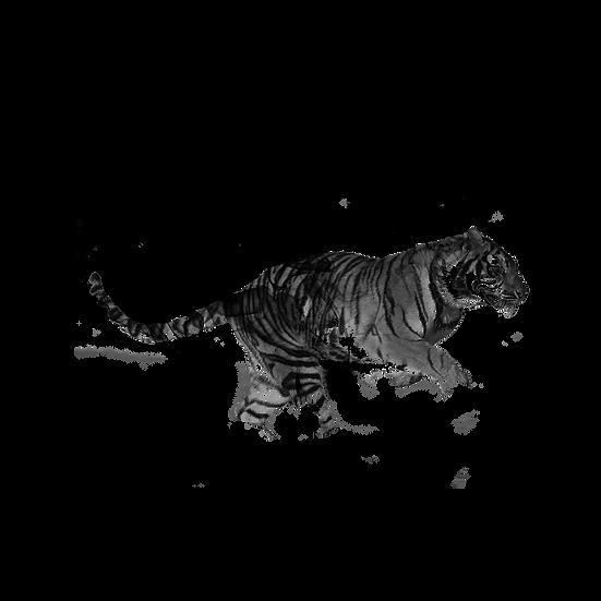 Tiger Black Smoke - Free PNG Images, Transparent Image Instant Download