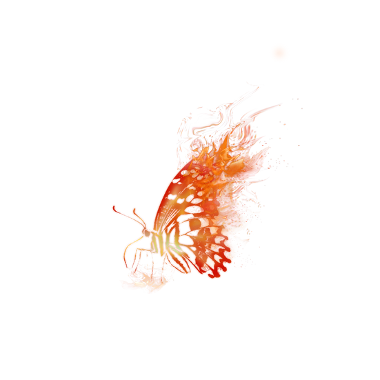 Burning Butterfly - Free PNG Fire Images, Transparent Image Digital Download
