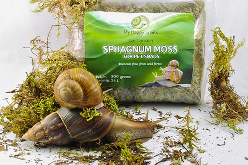 Sphagnum-Moss-For-Snail-Terrarium