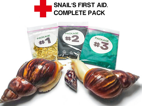 Snail's first aid pack. Pet snail emergency care kit1.