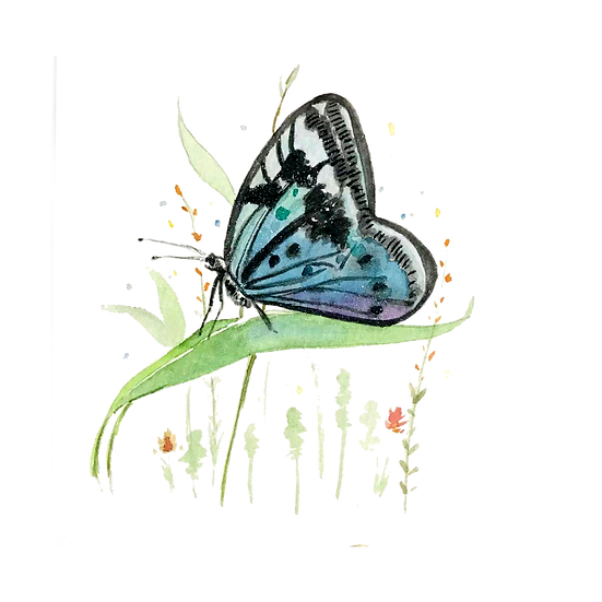 Cool Butterfly Illustration - Free PNG Image, Transparent Image Instant Download