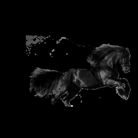 Smoke Effect Horse - Free PNG Images, Transparent Image Digital Download