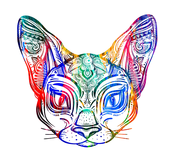 Colorful Cat Free PNG Images - Free Digital Image Download