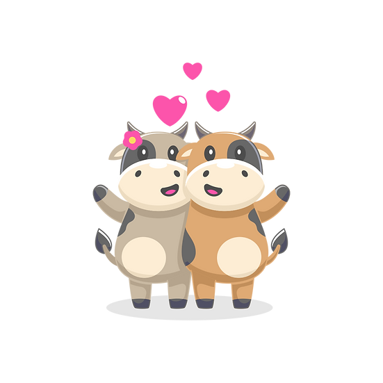 Cow and Bull in Love - Valentine's Day PNG Transparent Image - Instant Download