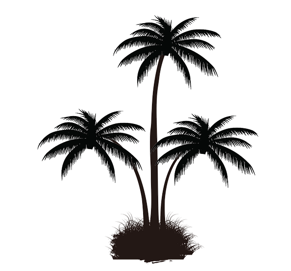 Three Palm Trees Silhouette Free PNG Images - Free Digital Image Download