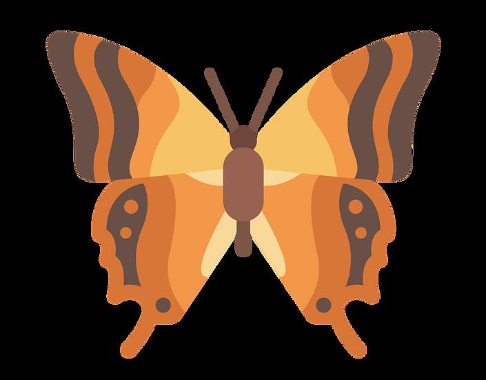 Orange Butterfly - Free PNG Images, Transparent Image Digital Download