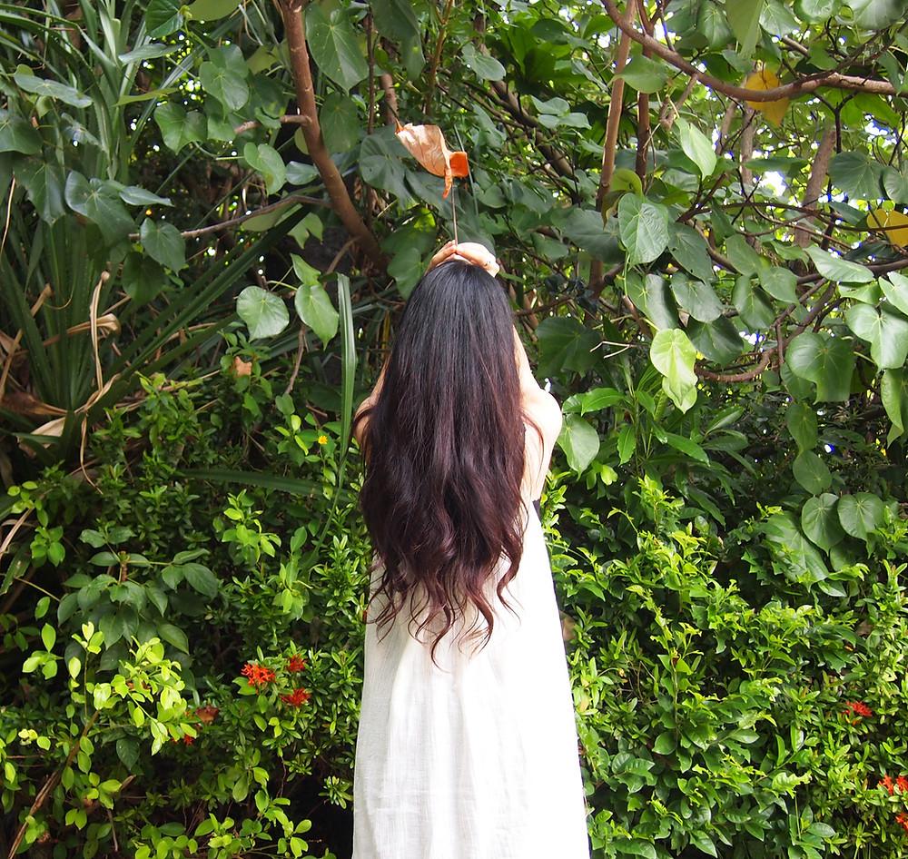 にょきにょき。頭から葉っぱ。