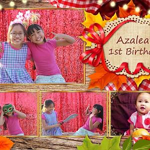Azalea's 1st Birthday Picnic Themed