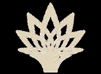 Lotus-Trumpet_Logo_Big_edited_edited_edi