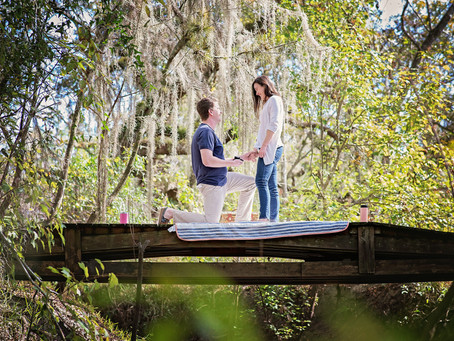 Surprise proposal in the woods