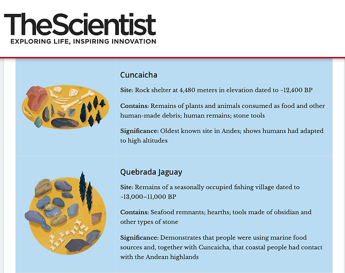 Screen capture of The Scientist magazine detailing  the sites Quebrada Jaguay and Cuncaicha