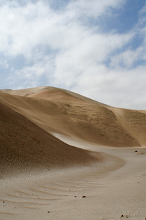 Sand dune seen while on survey. Photograph by Emily Milton