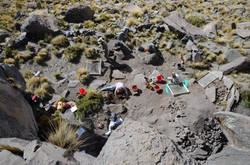 2015 Excavations