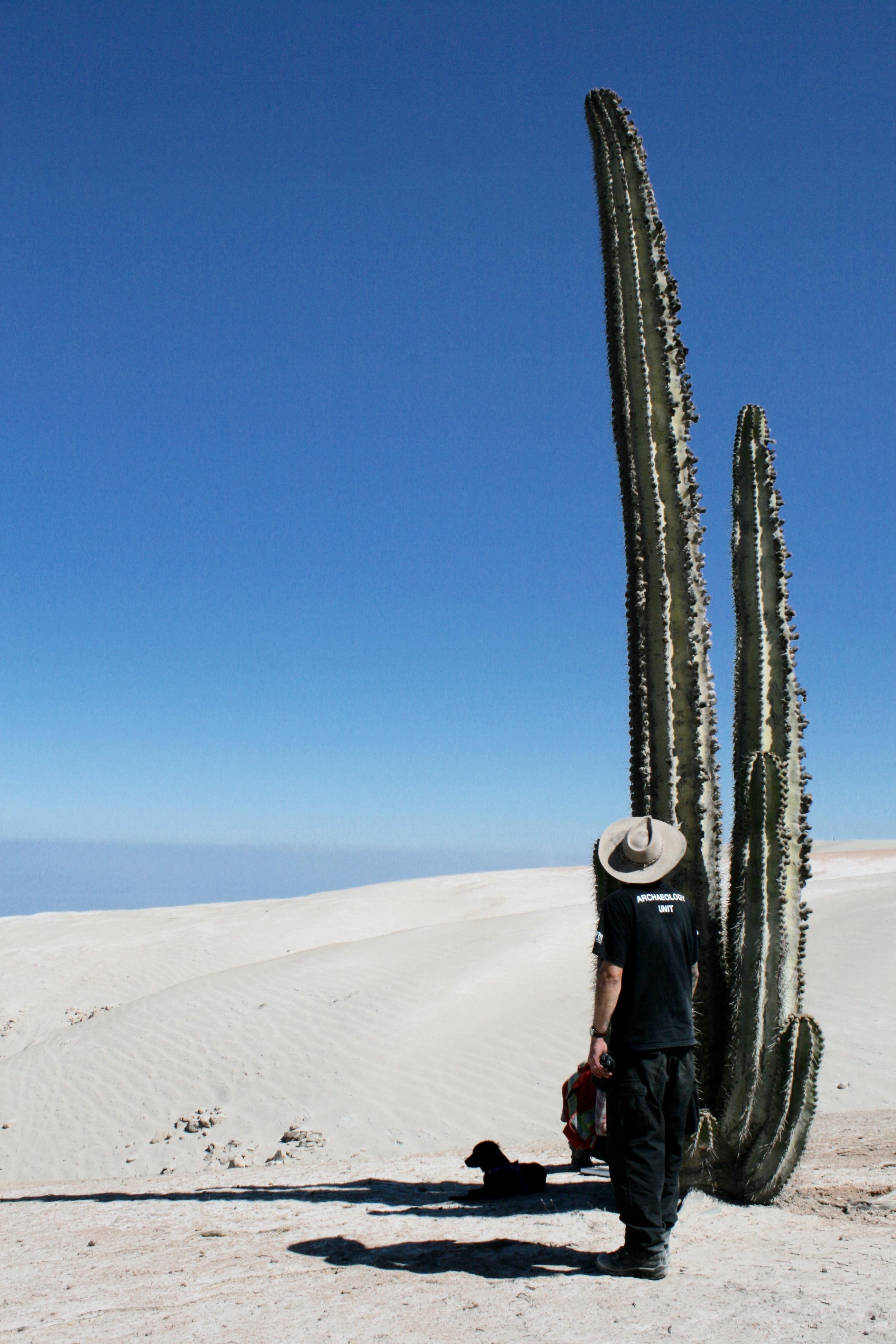 Kurt Rademaker vs. Cactus
