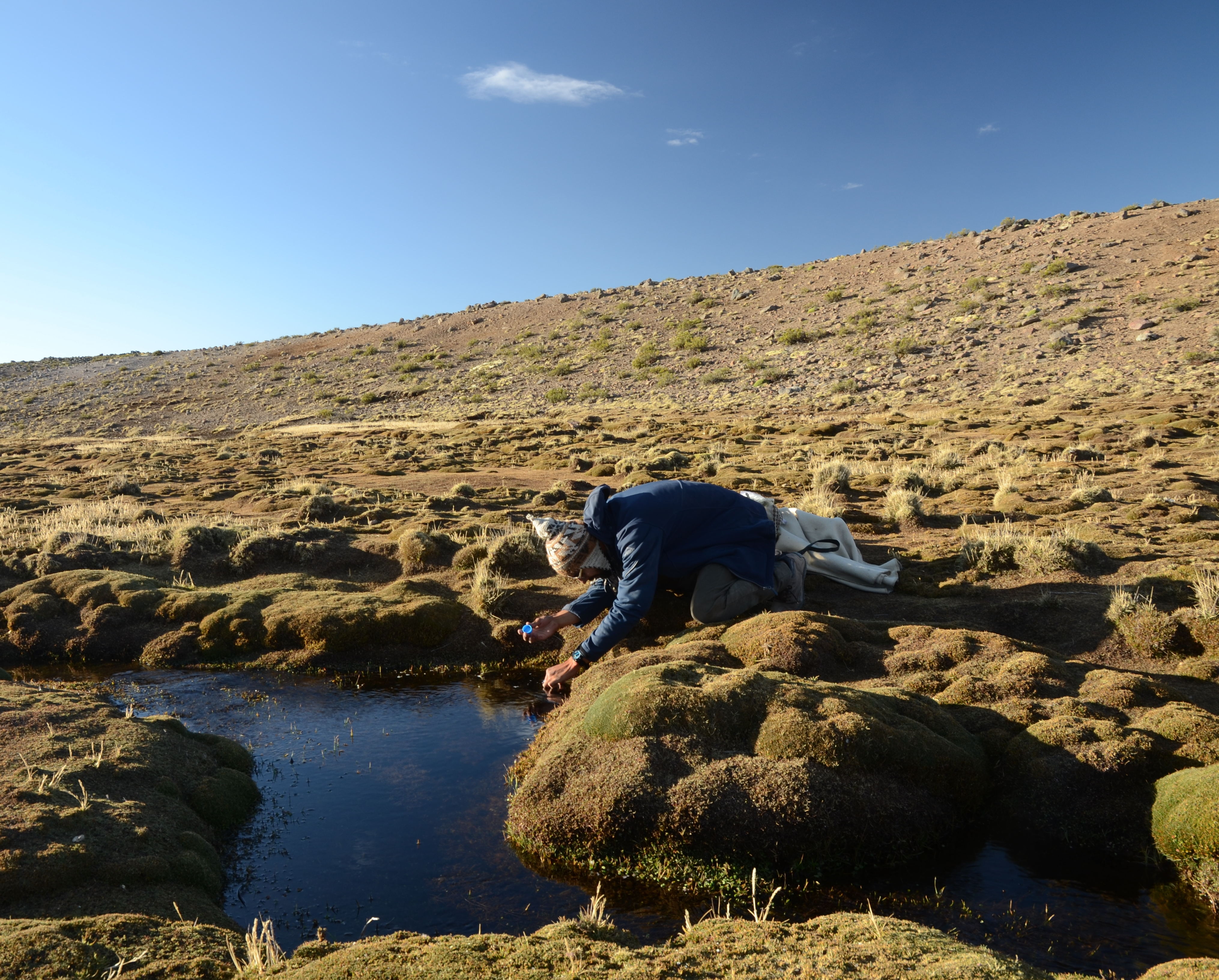 Dober Collecting Water Samples