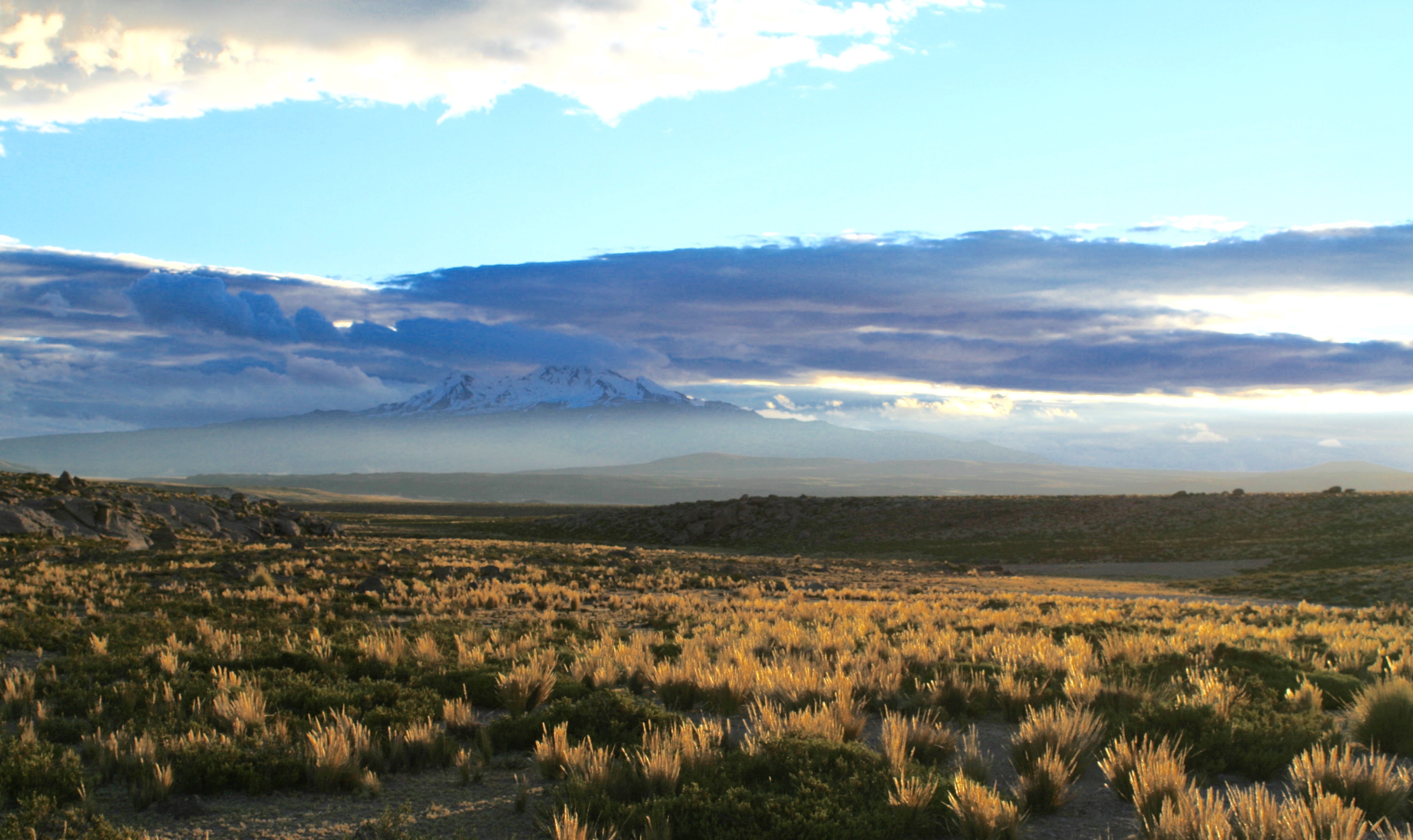 Pucuncho Basin 2017