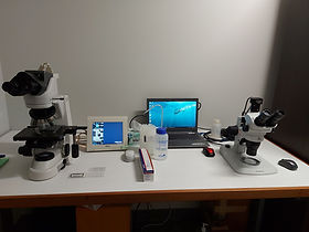 Microscope room.jpg
