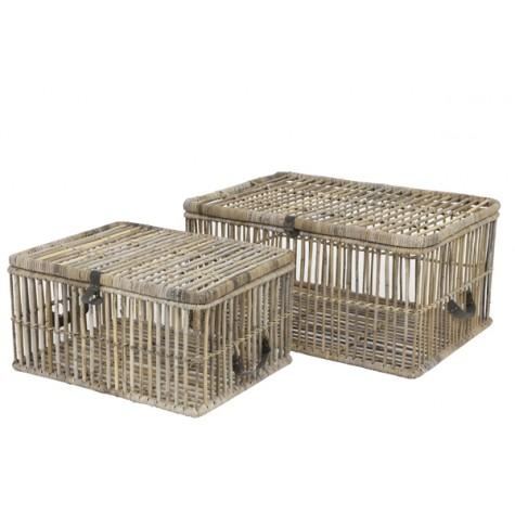 Aeca em bambu