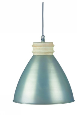 30919-ZIN
