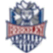 Lion Logos_Swim-01.png