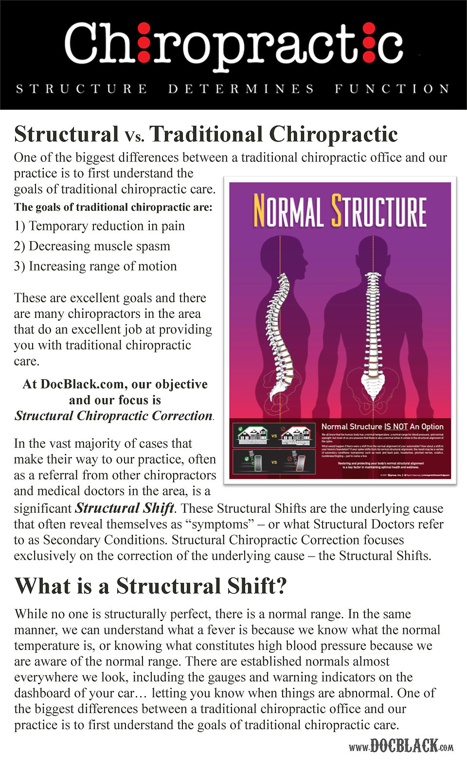What is Chiropractic at DocBlack.com