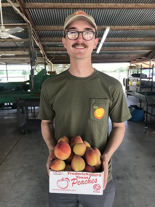 Vogel Orchard Logo Shirt