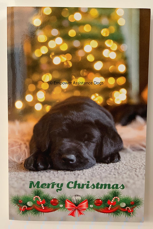 Christmas Card Pack of 10