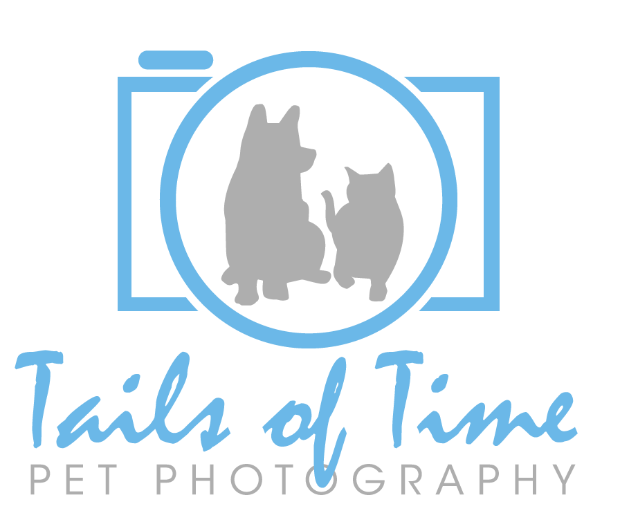 Tails of Time Pet Photography