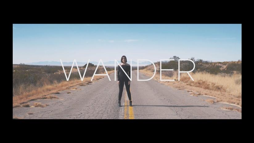 Hello Shannon - Wander (2018)