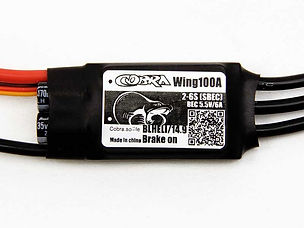 wing-100-esc-l.jpg