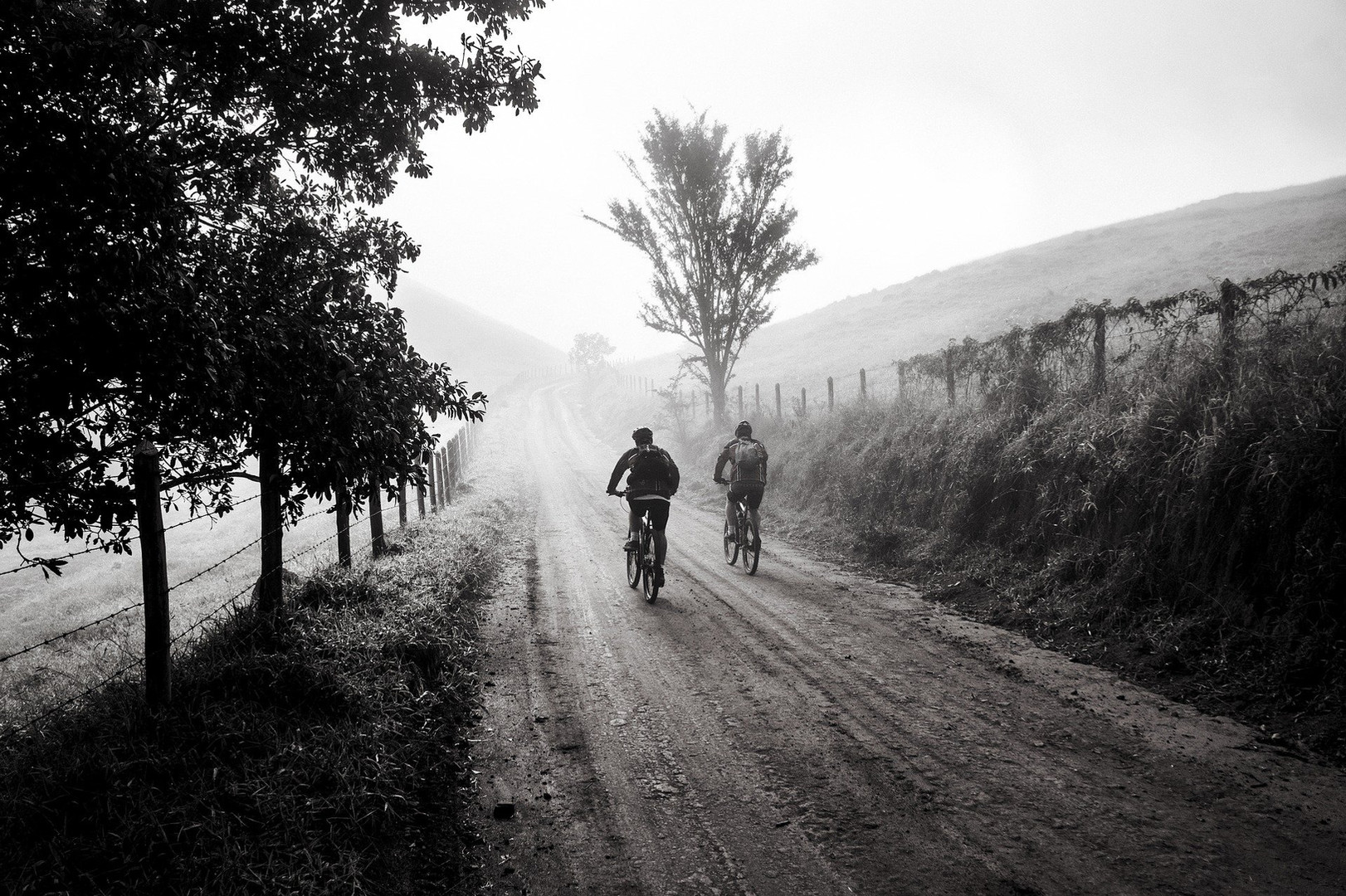bike-1534902_1920.jpg