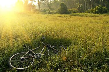 bicycle-241514_1920.jpg