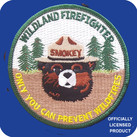 SMOKEY WILDLAND FIREFIGHTER